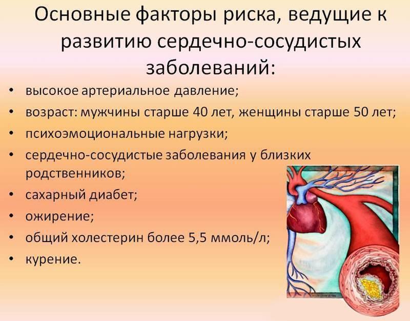 атеросклероз кардиологический