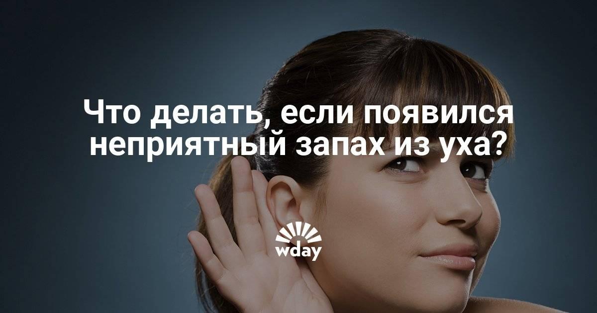 Пахнет не приятно из ушка!!! - не приятный запах из уха малыша - запись пользователя катерина (89876412040) в сообществе здоровье новорожденных в категории отит - babyblog.ru