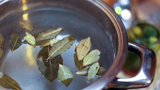 Настой лаврового листа при цистите