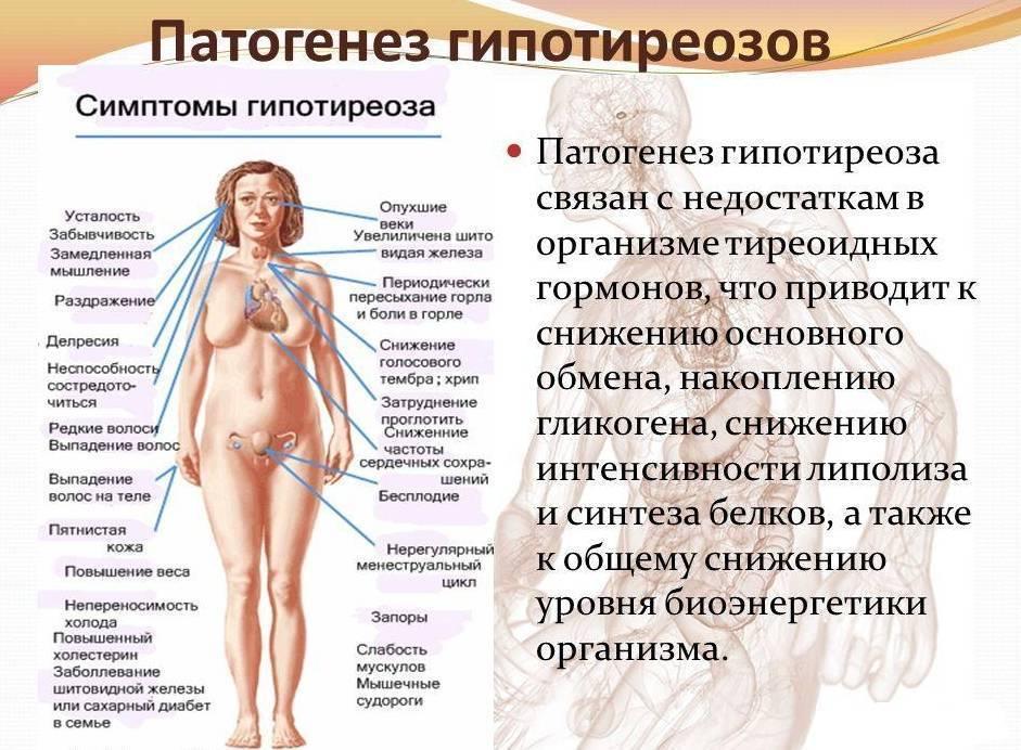 Признаки заболевания щитовидной железы у женщин