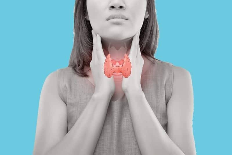 Как заболевания щитовидной железы влияют на зачатие | эко-блог