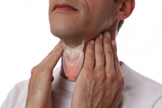 жара и щитовидная железа