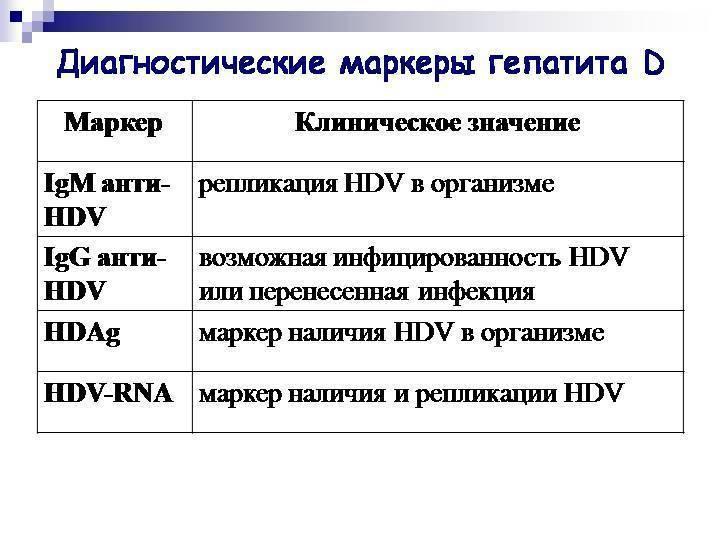 Вирусный гепатит в. заражение гепатитом, симптомы и признаки гепатита. анализ крови на гепатит в (маркеры гепатита), антитела к гепатиту в (hbsag, анти-hbc igm, анти-hbc общий, hbeag, анти-hbe), пцр диагностика, билирубин, аст, алт. :: polismed.com