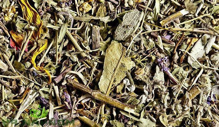 Какие травы пить при гепатите