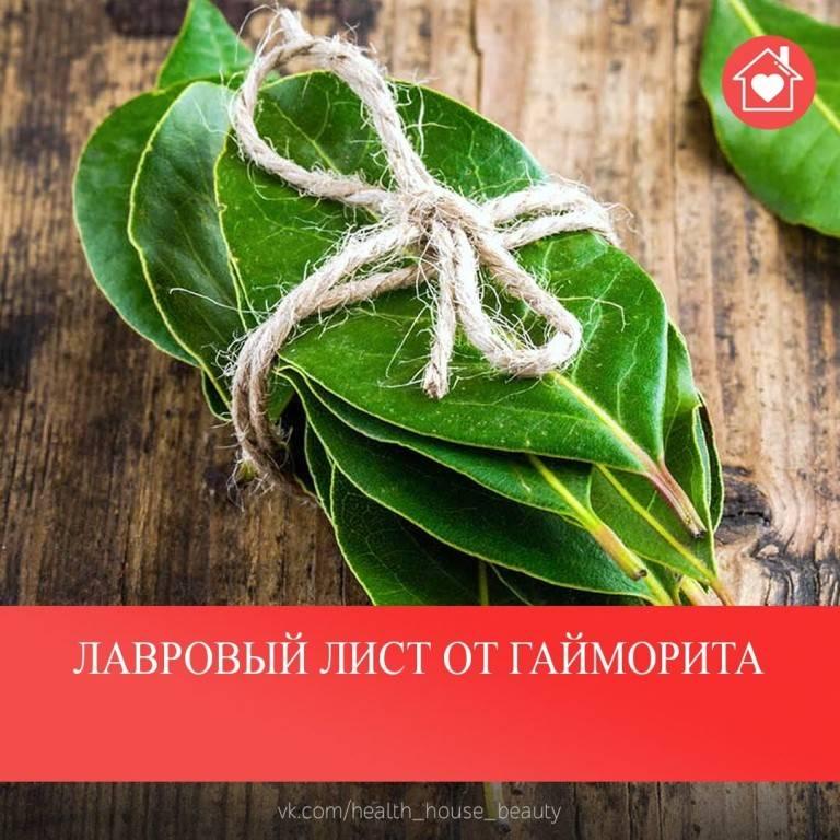 народное средство от гайморита лавровым листом