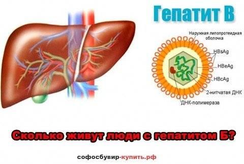 продолжительность жизни при гепатите в