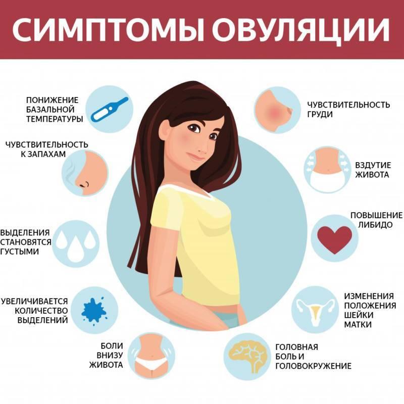 болит грудь с середины цикла