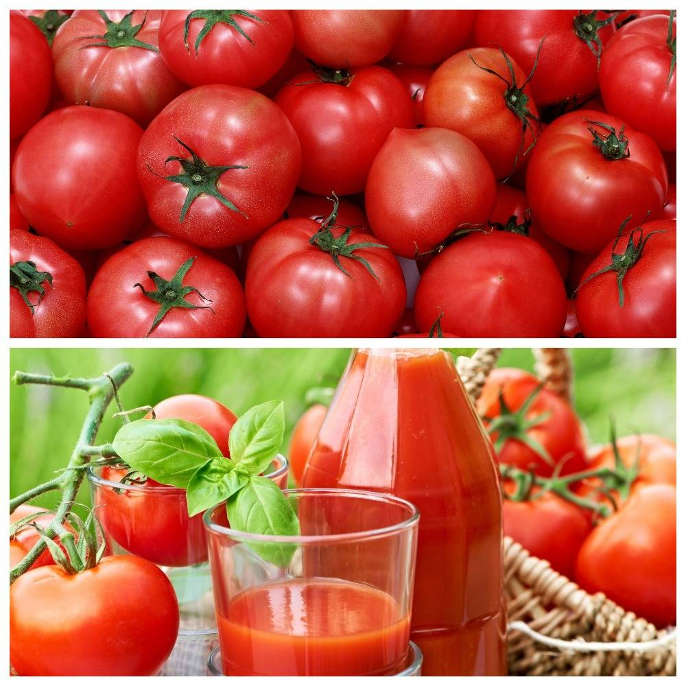 Вред и польза помидоров для печени