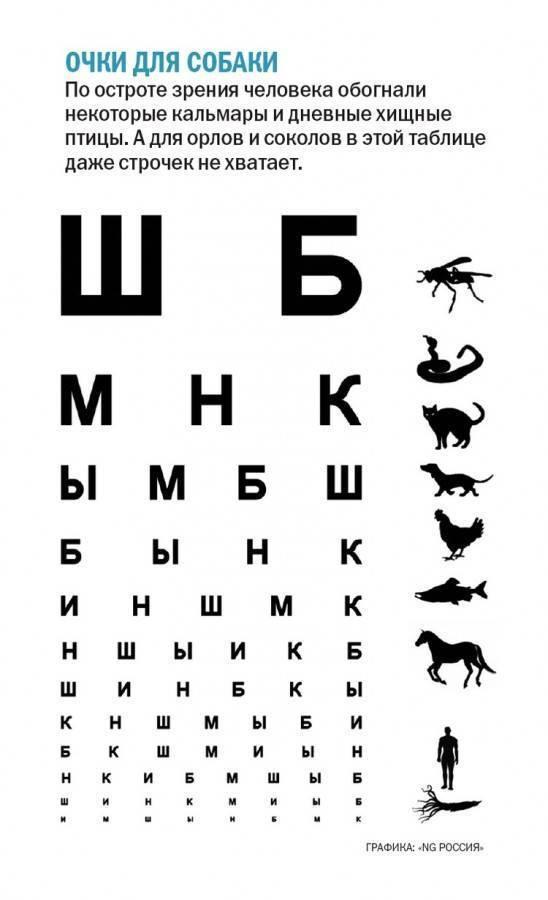 Способы проверки зрения у детей в домашних условиях