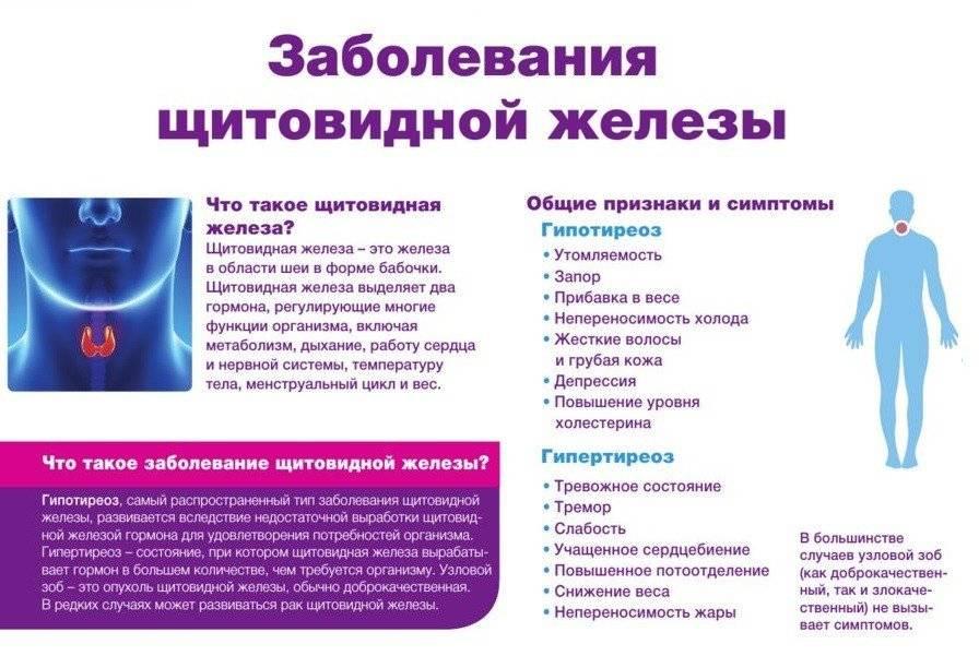 нарушение функции щитовидной железы симптомы и лечение