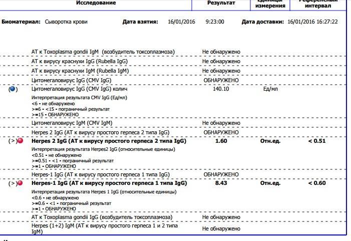 антитела к герпесу