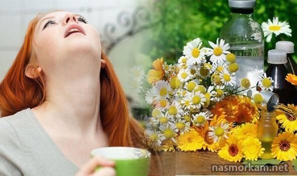 Полоскание горла ромашкой при ангине у взрослых