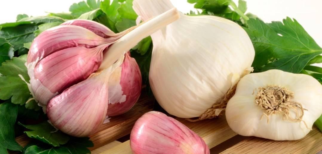Можно при геморрое кушать лук и чеснок