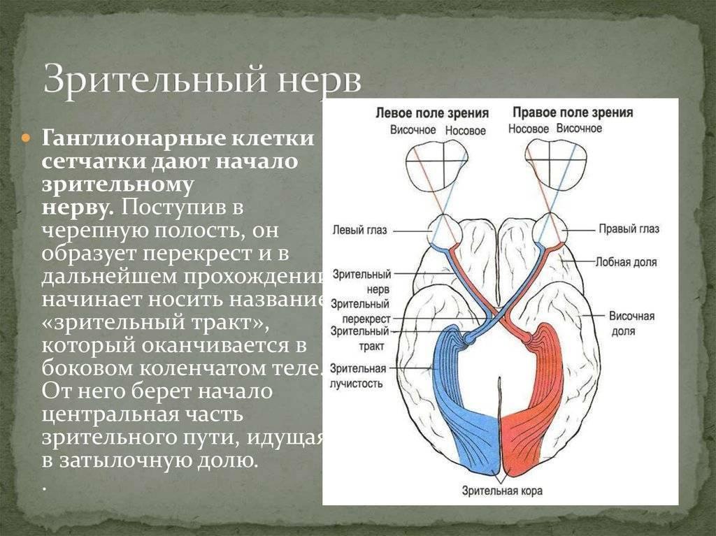 глазной нерв симптомы