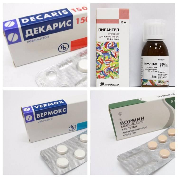 таблетки для глистов для профилактики