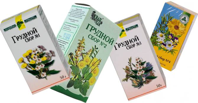 травы от кашля отхаркивающие