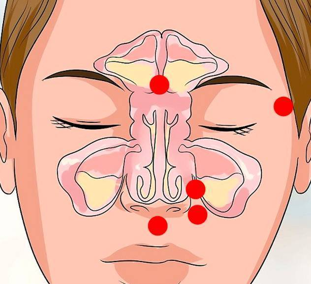 почему постоянно заложен нос у взрослого