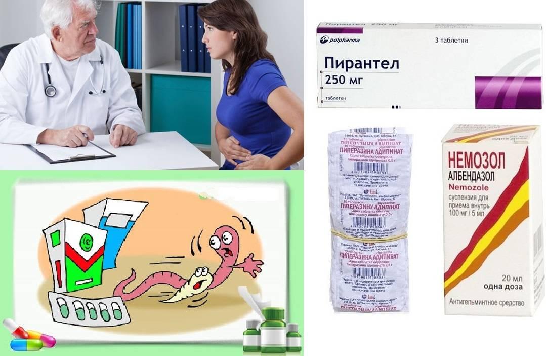 Какие лучше применять таблетки для лечения остриц у взрослых