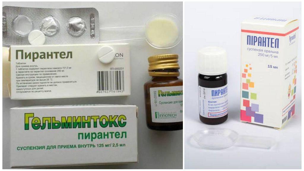 Глисты при кормлении грудью: инфекционные и паразитарные болезни