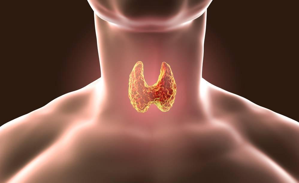 Ком в горле при остеохондрозе шейного отдела - причины, лечение и диагностика