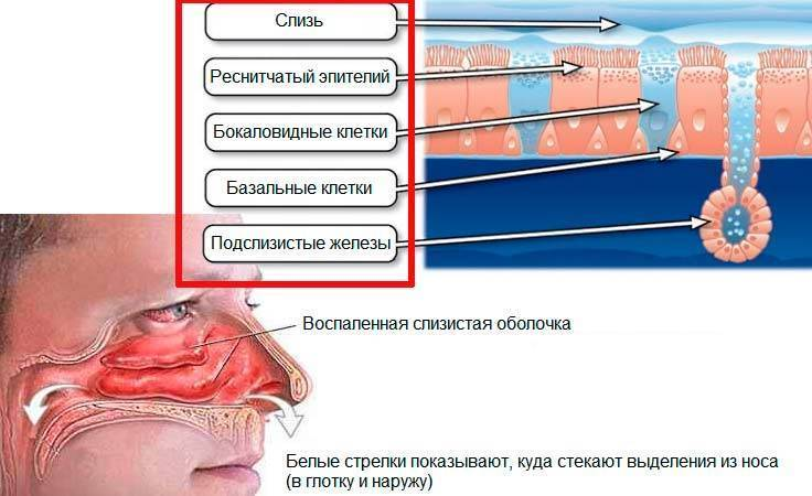 Хроническая заложенность носа: хирургические методы лечения