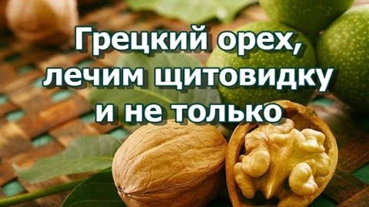 Щитовидная железа лечение народными средствами грецкий орех