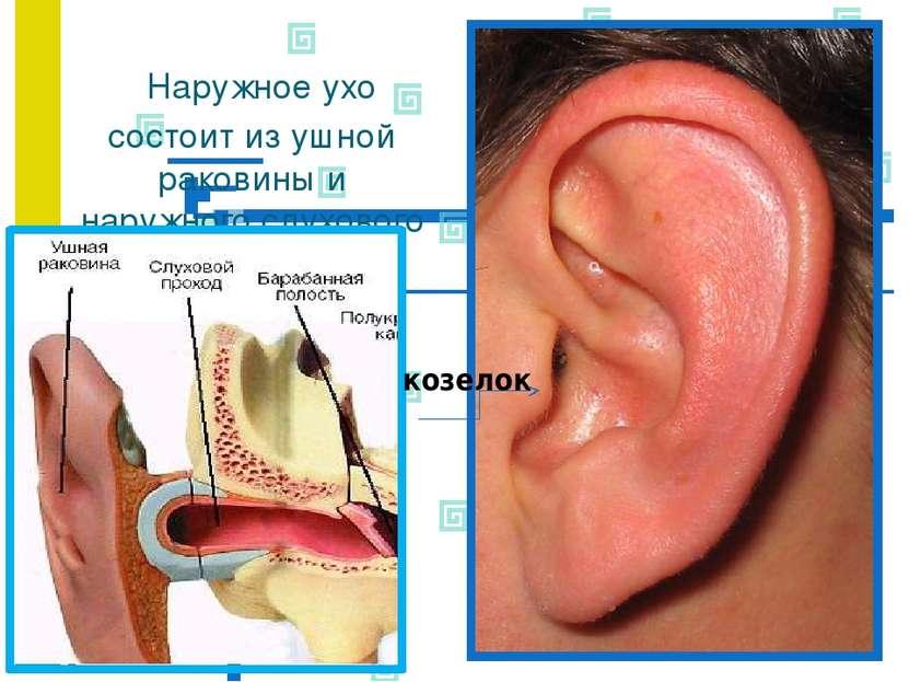 Причины болей в ушной раковине снаружи