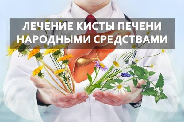 кисты печени лечение народными средствами