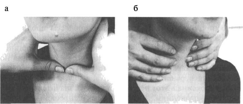 Пальпация щитовидной железы заключение. пальпация щитовидной железы — как прощупать щитовидку