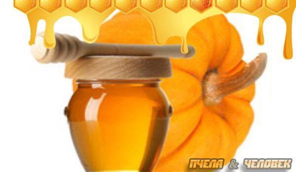 тыква и мед для печени