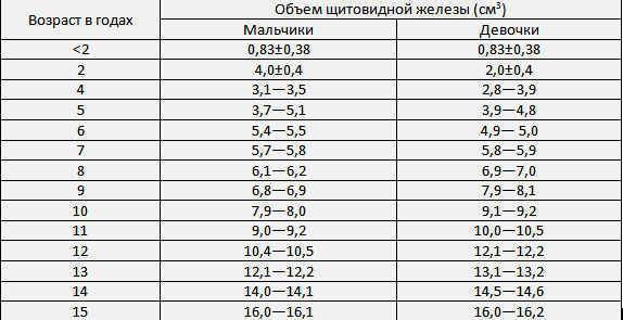 щитовидная железа размеры у женщин норма таблица