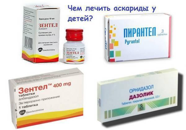 Эффективно ли лечение аскаридоза народными методами