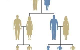 Передается ли шизофрения по наследству или это приобретенное заболевание?