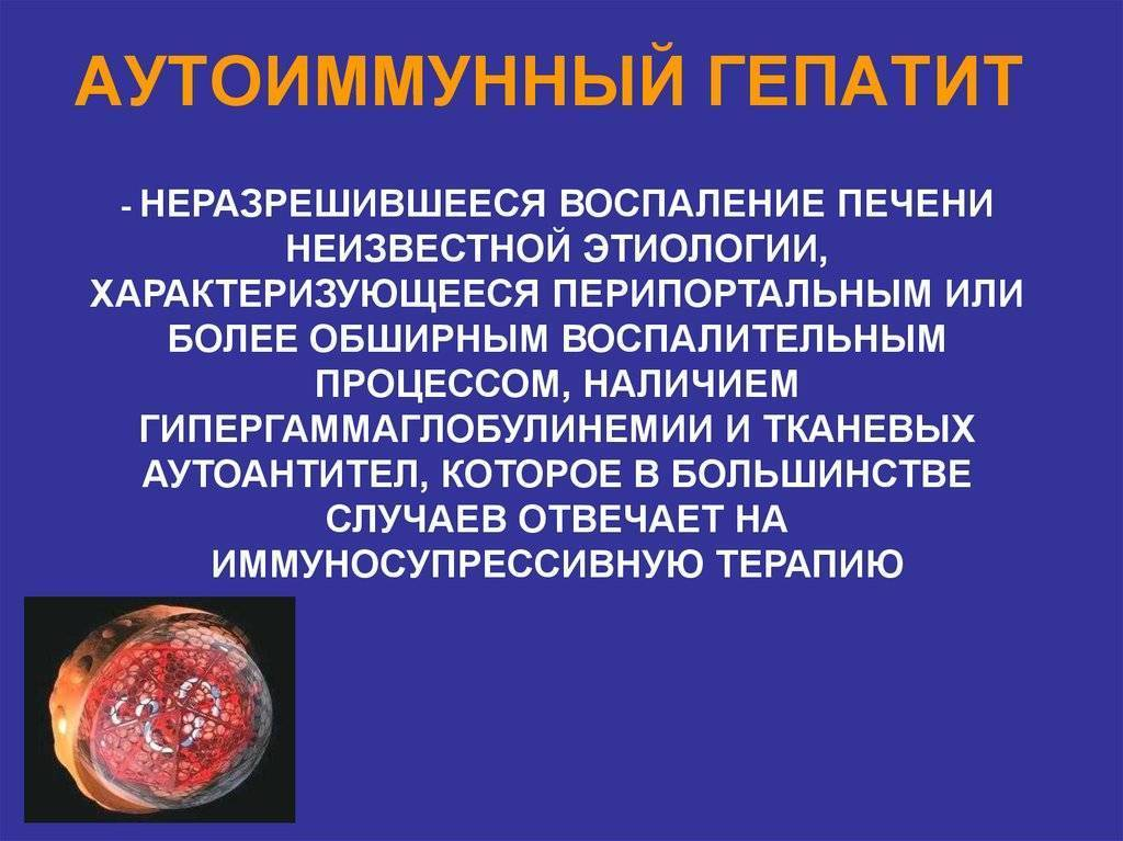 Аутоиммунный гепатит - autoimmune hepatitis