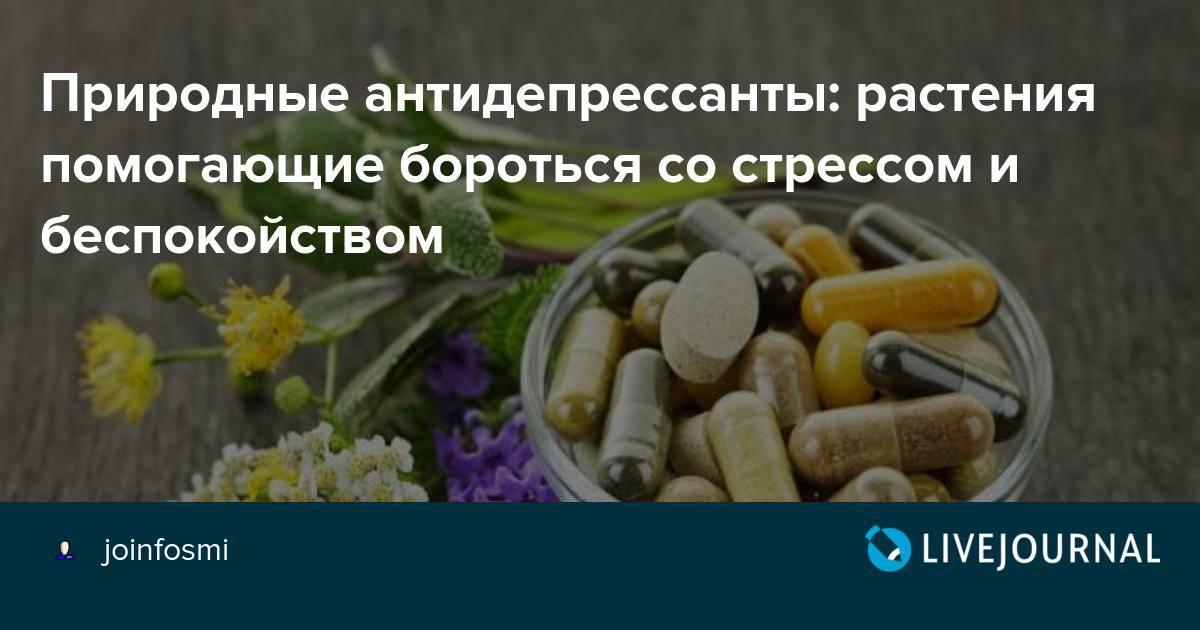 Продукты антидепрессанты защищают от стресса
