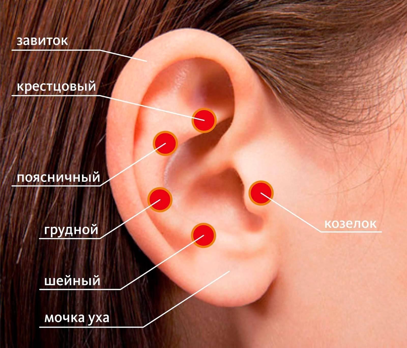 какие точки на ухе лечат глаза