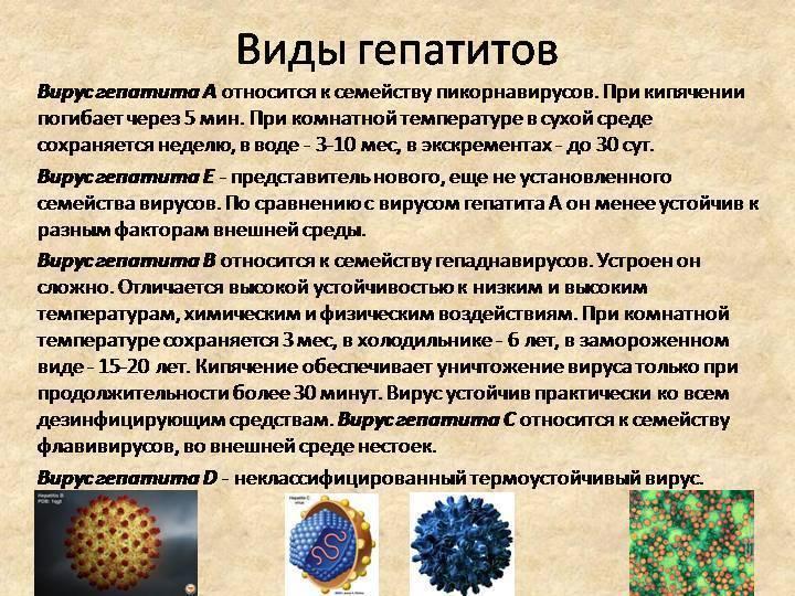 Виды гепатитов и их признаки, способы заражения, диагностика и лечение | клиника «профимедика»
