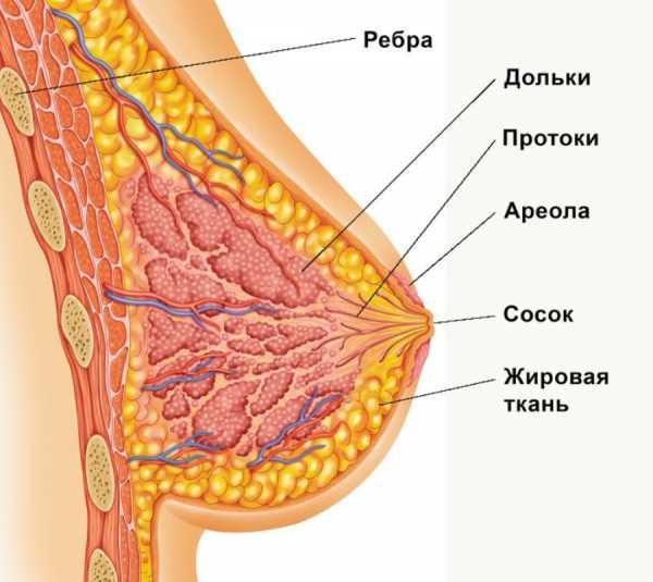Воспаление кисты молочной железы
