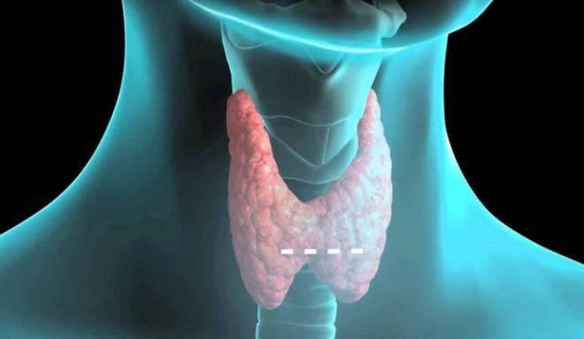 Психологические причины болезни щитовидной железы | стимулируем жизненную энергию