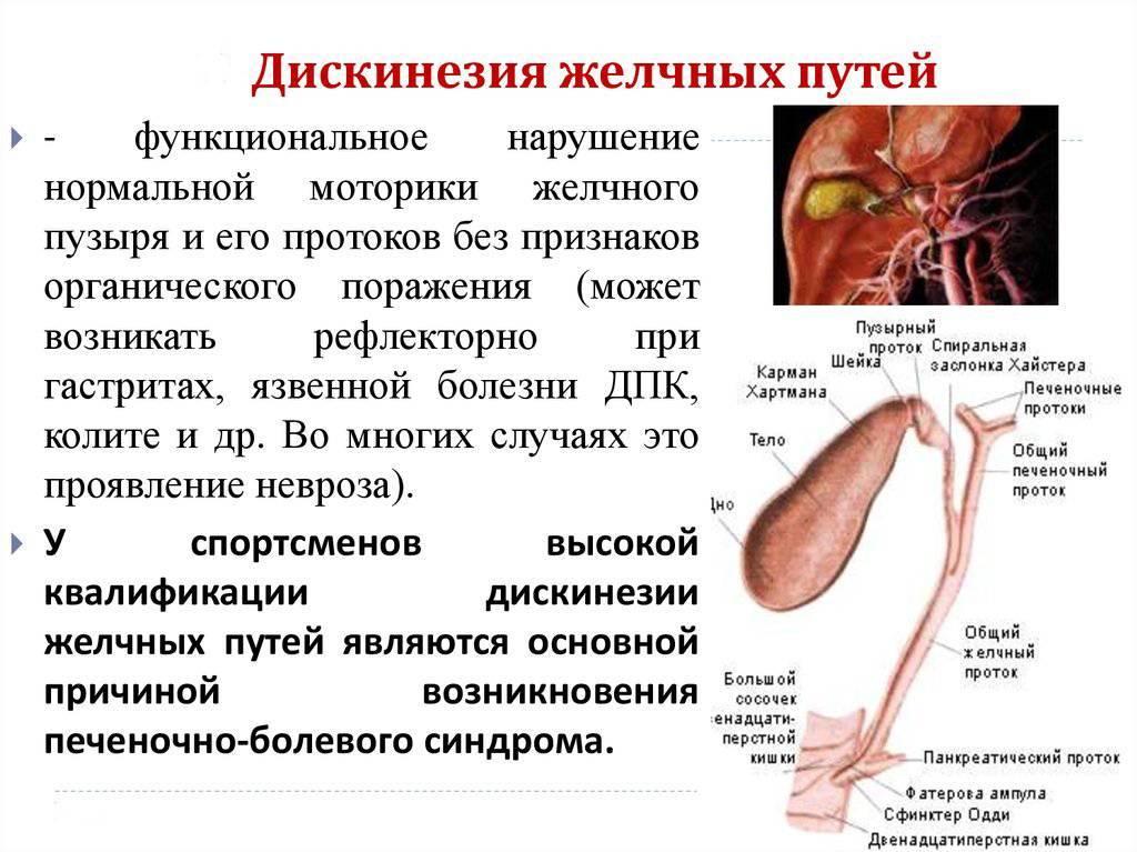 Дисфункция желчного пузыря: симптомы, причины и лечениедиагностика и лечение печени и желчного пузыря