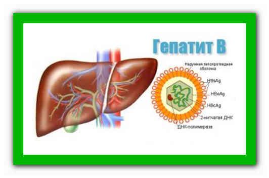 Анализы на гепатиты: маркёры, особенности проведения исследований и подготовки к ним