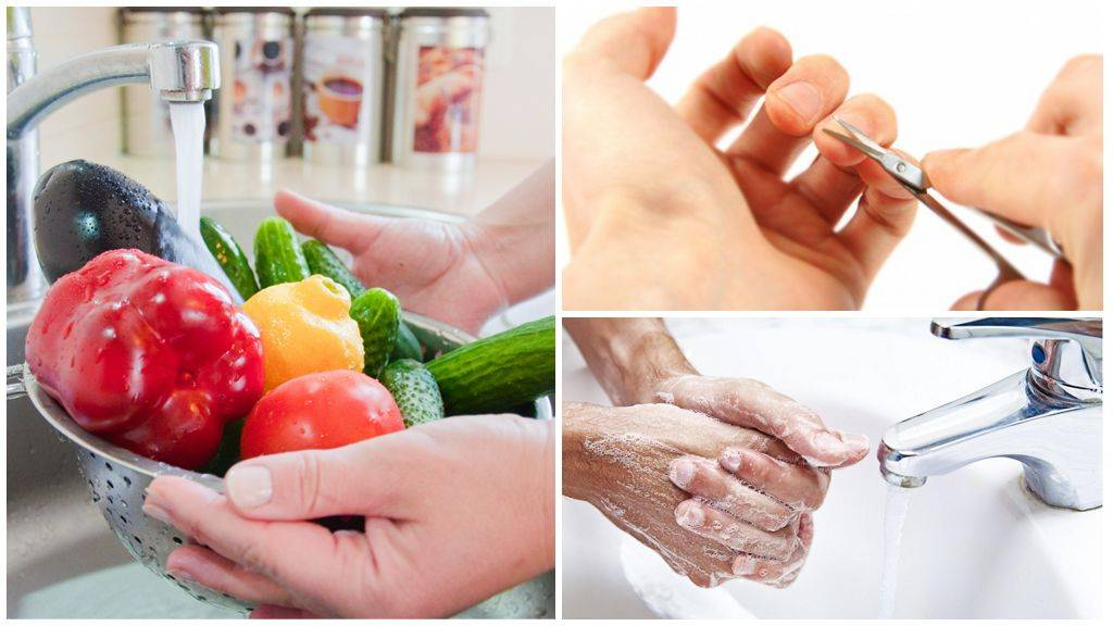 Глисты у человека: симптомы и лечение в домашних условиях