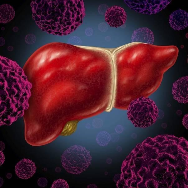 Хронический гепатит с и продолжительность жизни
