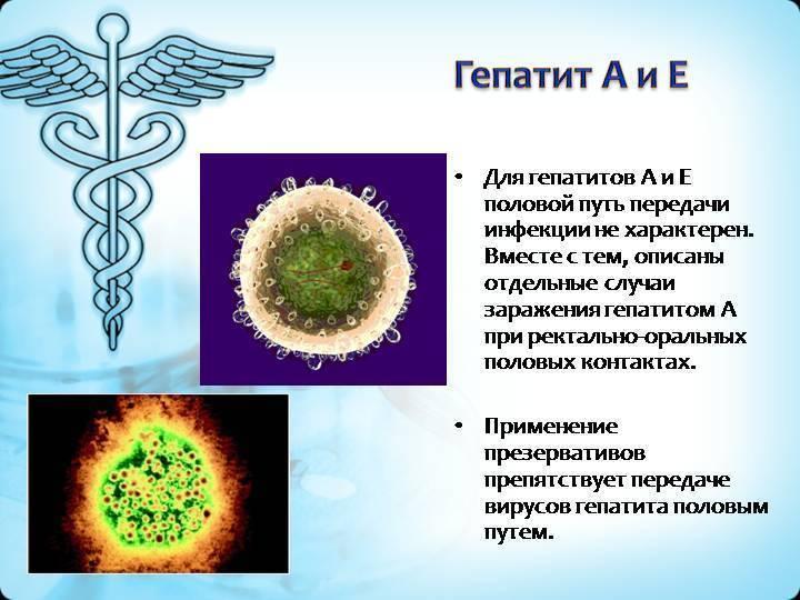 Можно ли заразиться гепатитом с и в половым путем?