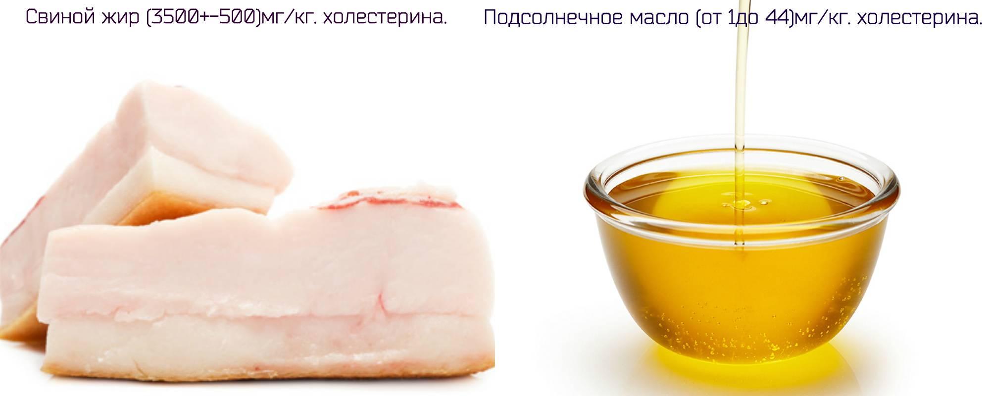 Сколько холестерина содержит свиное сало и можно ли его есть