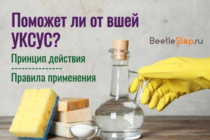 Всё о том, как вывести гнид уксусом: рецепт, который позволит вам эффективно вычёсывать этих паразитов