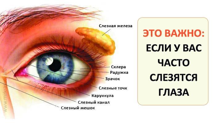 Слезятся глаза на улице: возможные причины, варианты лечения, профилактика