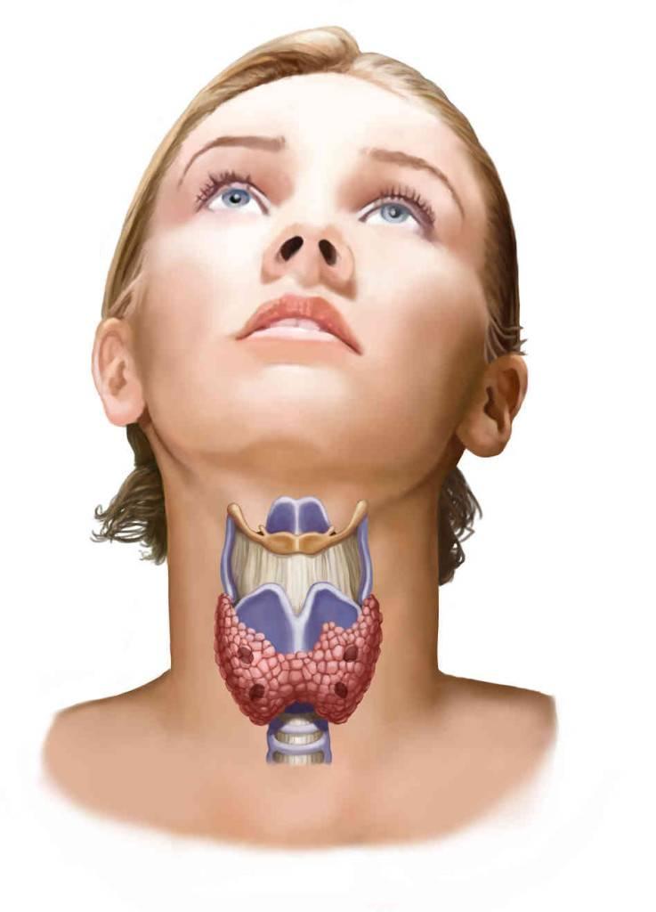 массаж щитовидной железы