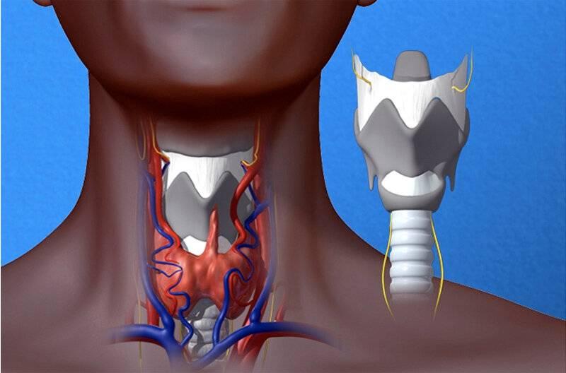 Рак горла – как распознать онкологию на ранних стадиях?