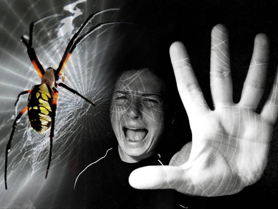 """Фобофобия или """"страх страха"""": причины развития и методы лечения"""